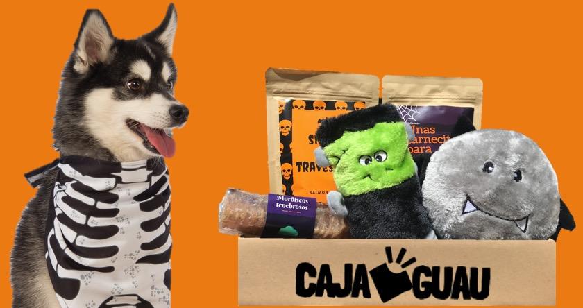 juguetes para perro octubre